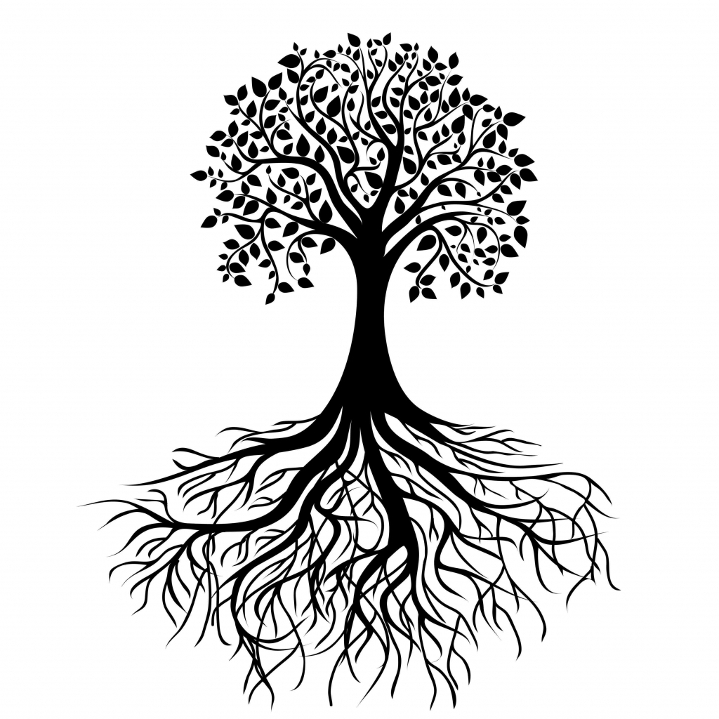 1024x1024 Tree Drawing With Roots Simple Drawing Of A Tree Simple Tree