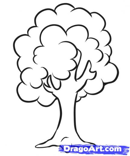 431x520 How To Draw A Simple Tree Drawing Drawings