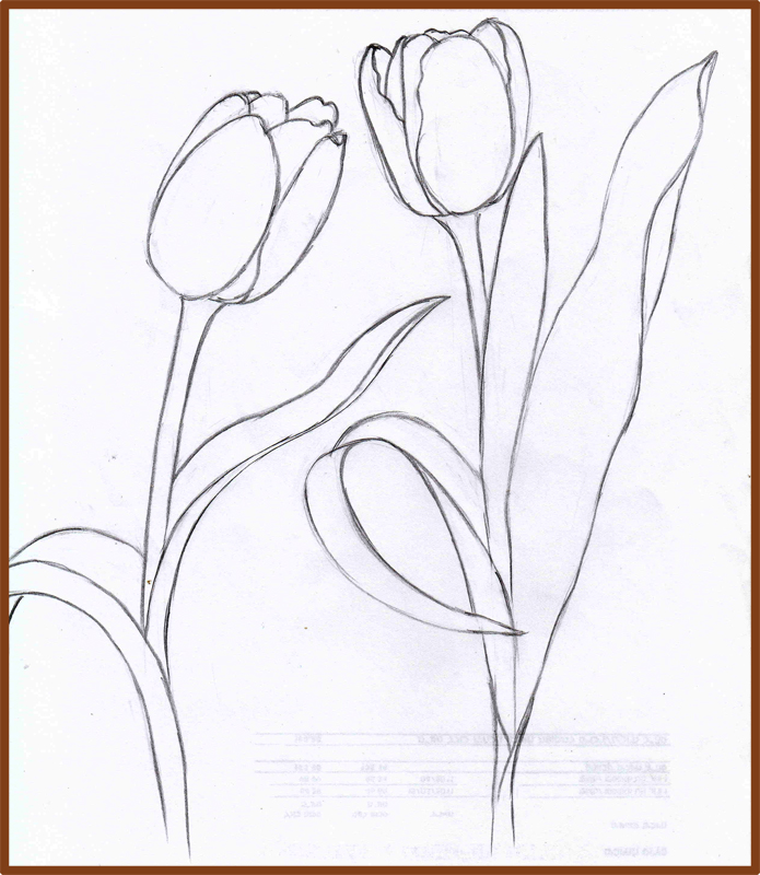 695x800 Weekly Doodles And Tuts How To Draw A Tulip Method 4