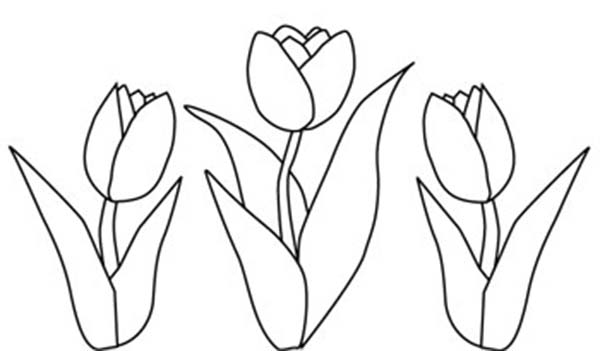 Simple Tulip Drawing at GetDrawings.com | Free for personal use ...