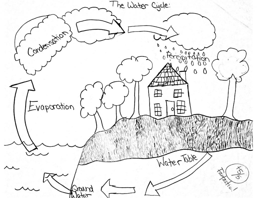 1024x791 Water Cycle Drawings Underground Electric Fence Wire