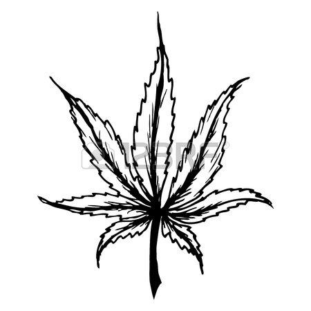 Simple Weed Leaf Drawing