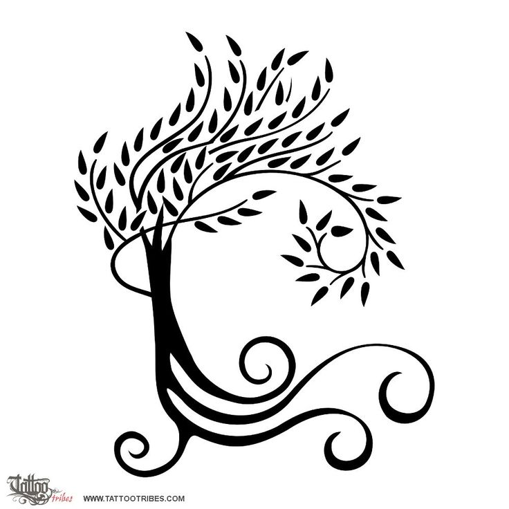 The Best Free Willow Tree Drawing Images Download From 50 Free