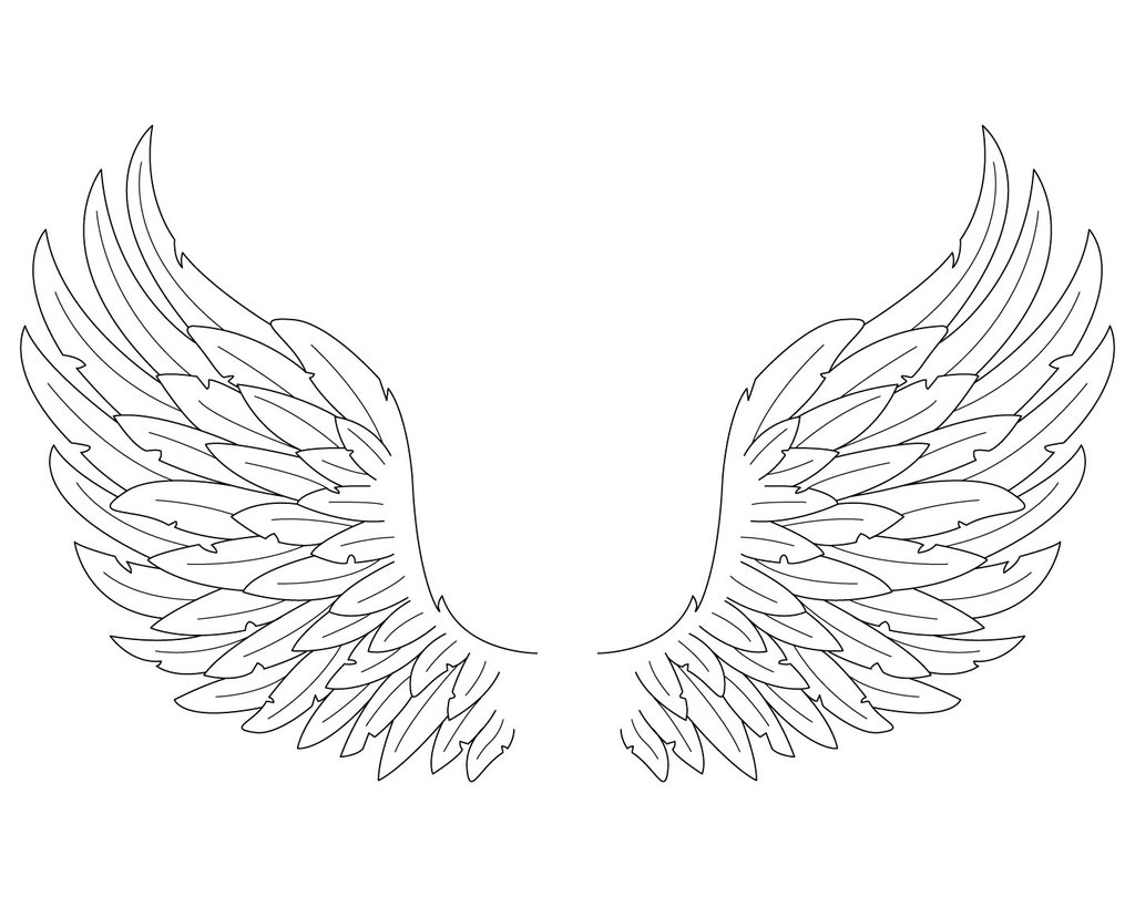 1024x819 Photos Simple Angel Wing Drawing