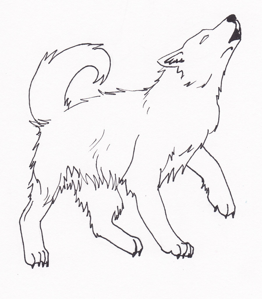 Wolf Howling At Moon Drawing Easy