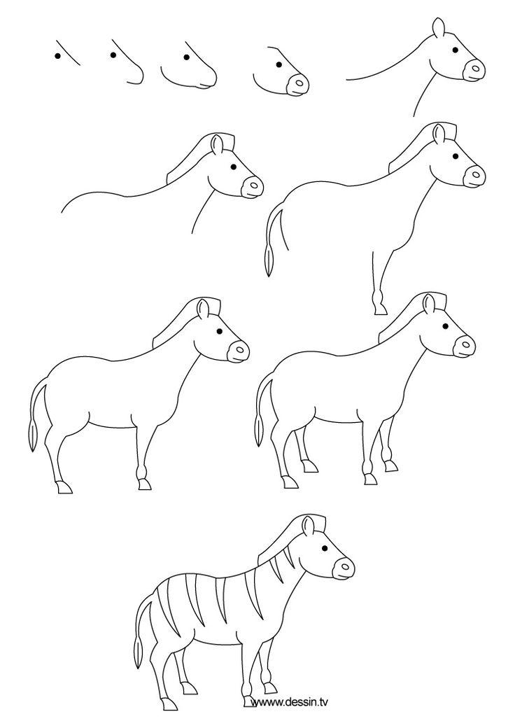 736x1040 How To Draw A Zebra Zebra Drawings, Draw Animals