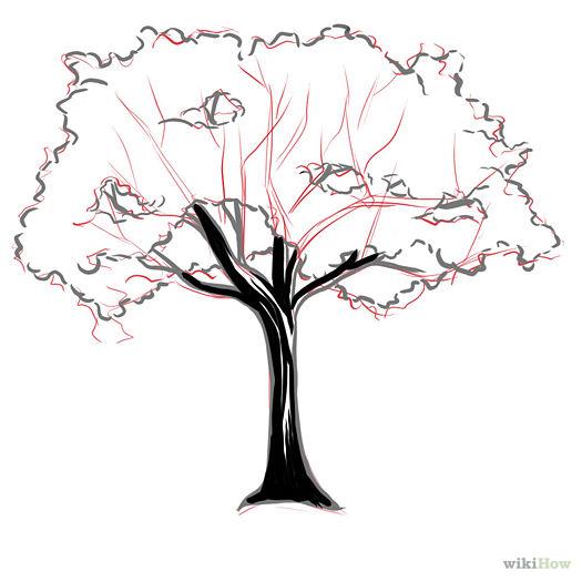525x525 Bark Step 4.jpg Farby Cherry Tree