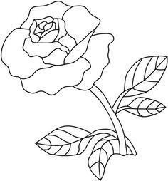 Single Red Rose Drawing