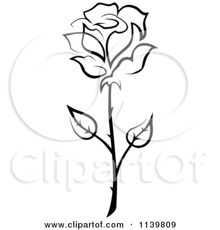 450x470 Royalty Free Single Rose Illustrations By Vector Tradition Sm Page 1