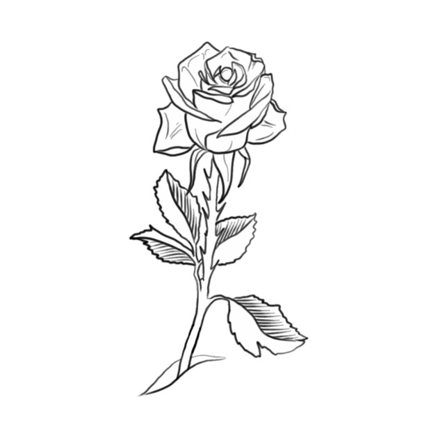 single rose drawing at getdrawingscom free for personal
