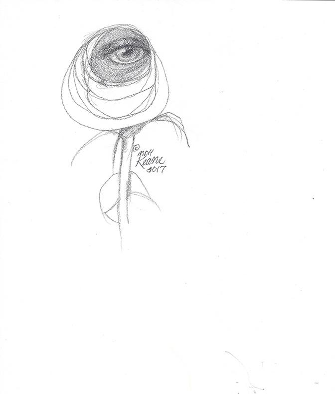 672x790 Eye In Single Rose Keane Eyes Gallery