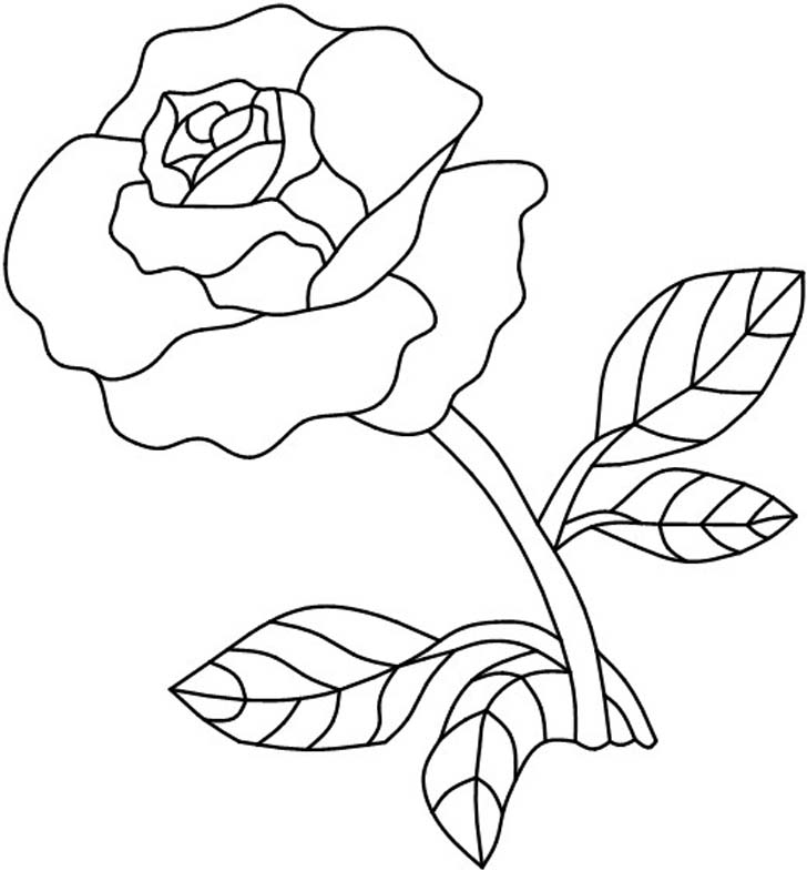 728x785 Single Rose Stained Glass Pattern