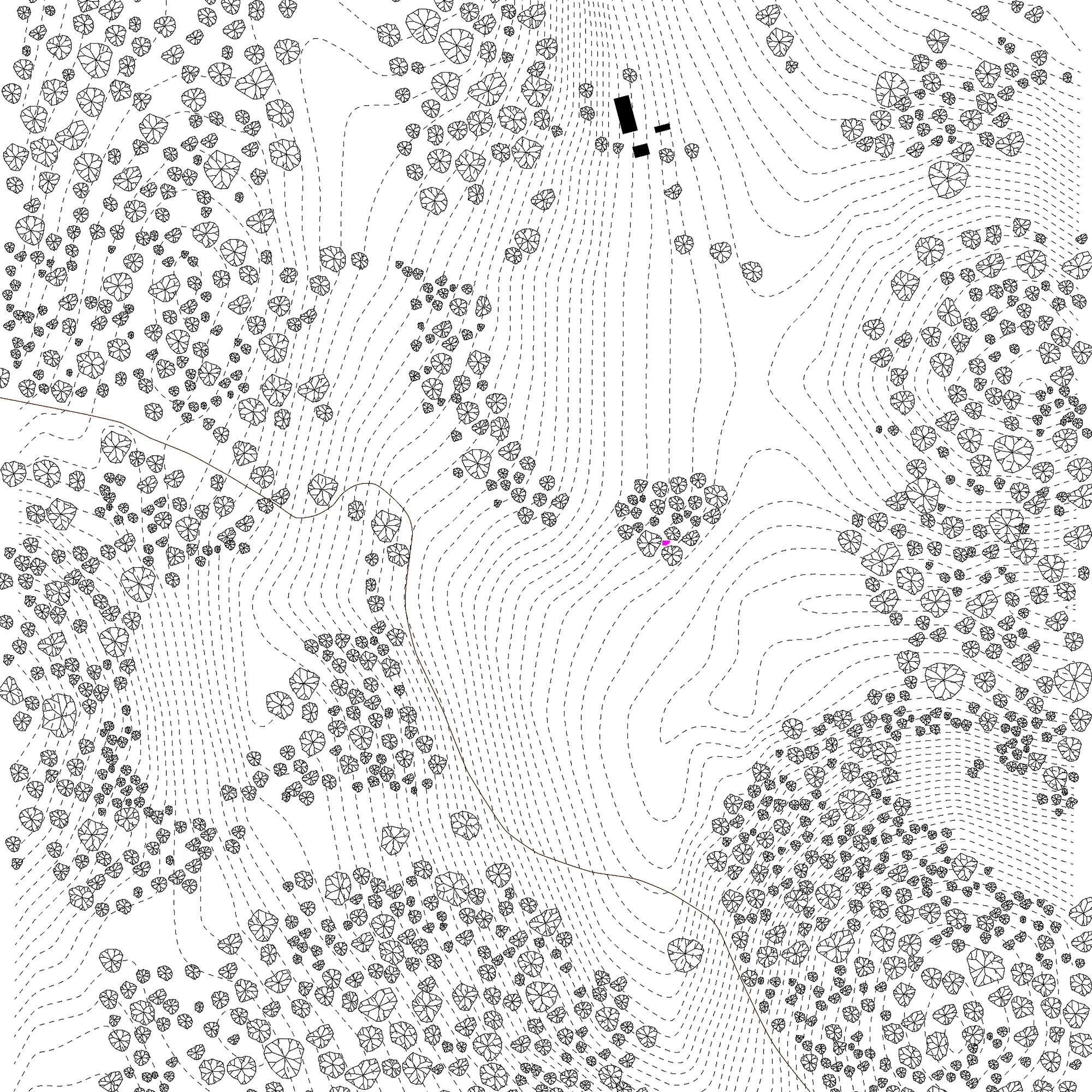 2000x2000 Site Plan
