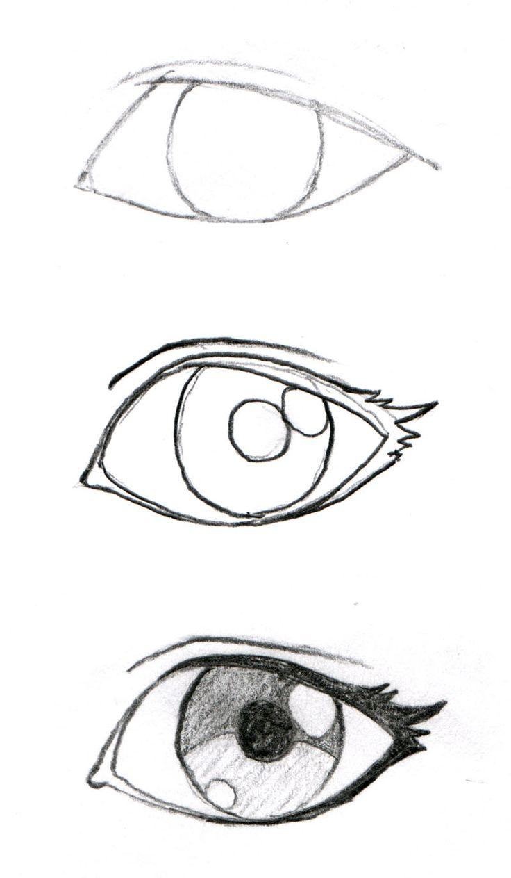 736x1263 Anime Rose Drawing The White Rosepandabaka