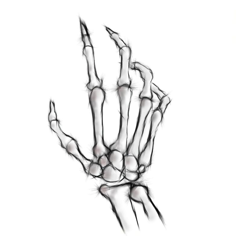 782x784 Mini Skeleton Hand Design By Fleshen