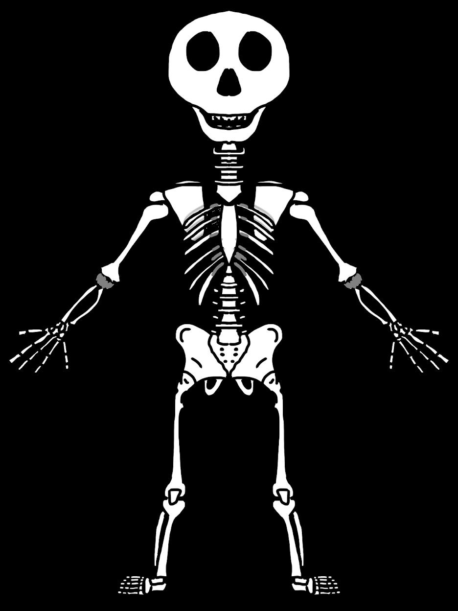 936x1248 Copy Of Human Body