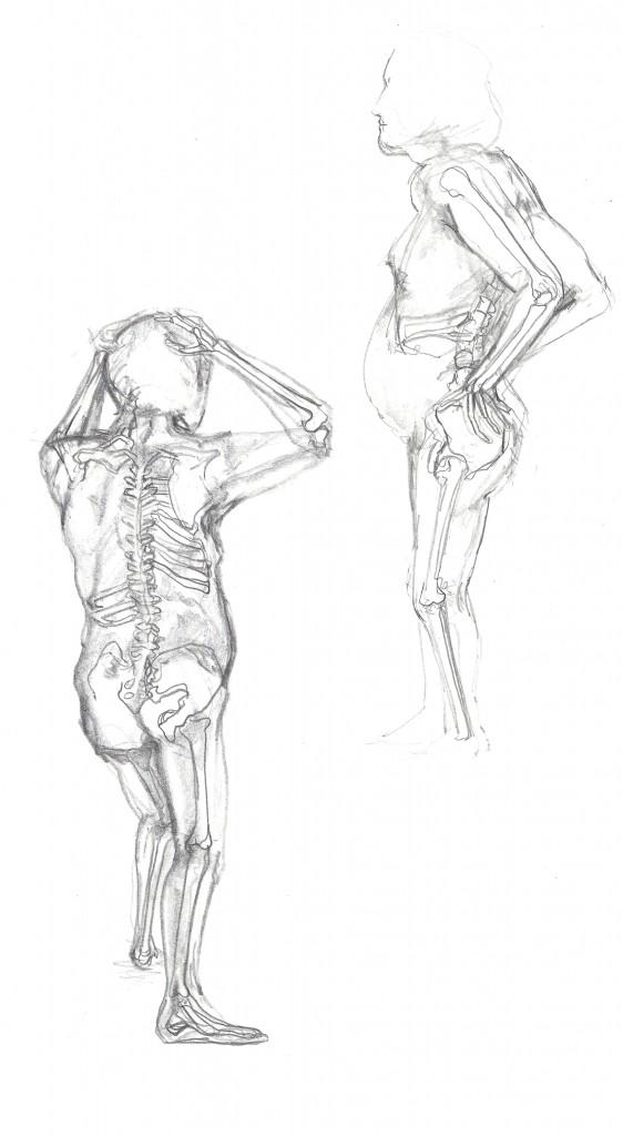 562x1024 The Naked Skeleton University Sketchbook
