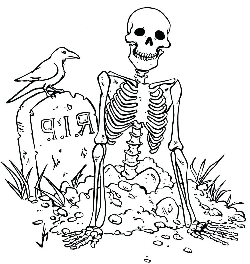Skeleton Drawing For Kids at GetDrawings   Free download