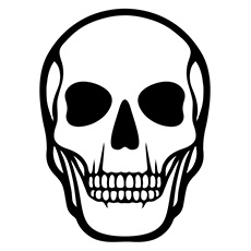 Skeleton Face Drawing