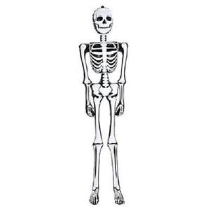 300x300 Inflatable Skeleton 72 Tall Blow Up 6 Feet Halloween
