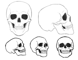 drawing easy skeleton skull