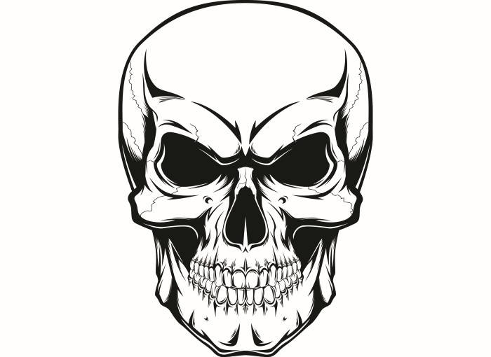 Skeleton Head Drawing at GetDrawings.com | Free for personal use ...