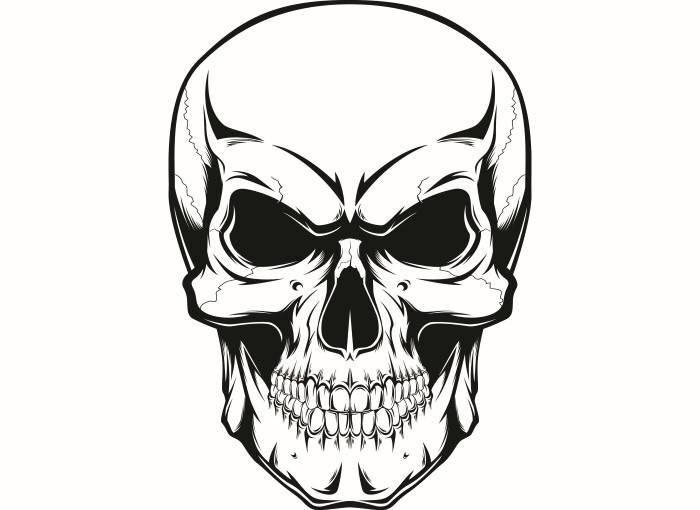 700x510 Skull