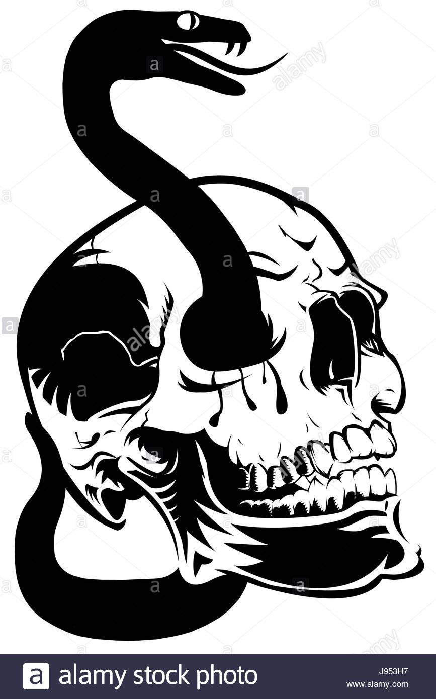 867x1390 Eyes, Skull, Halloween, Blood, Snake, Poison, Skeleton, Head, Art