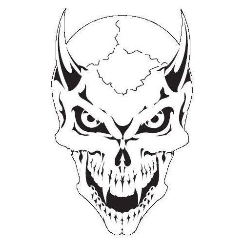 500x500 Drawn Skeleton Skull