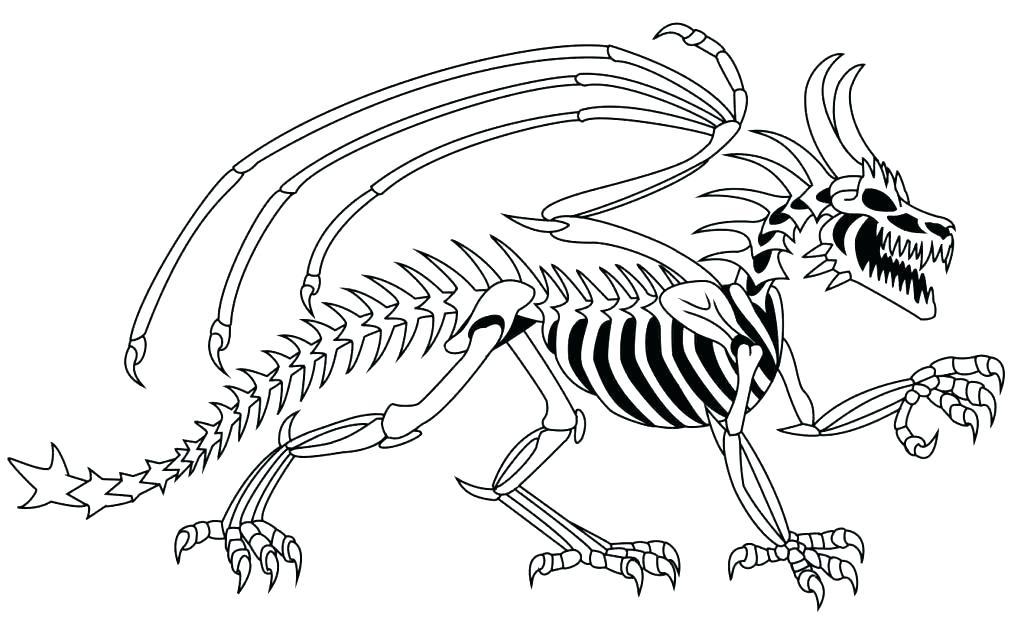 1024x627 Skeleton Coloring Book Plus Skeleton Coloring Page Skeleton