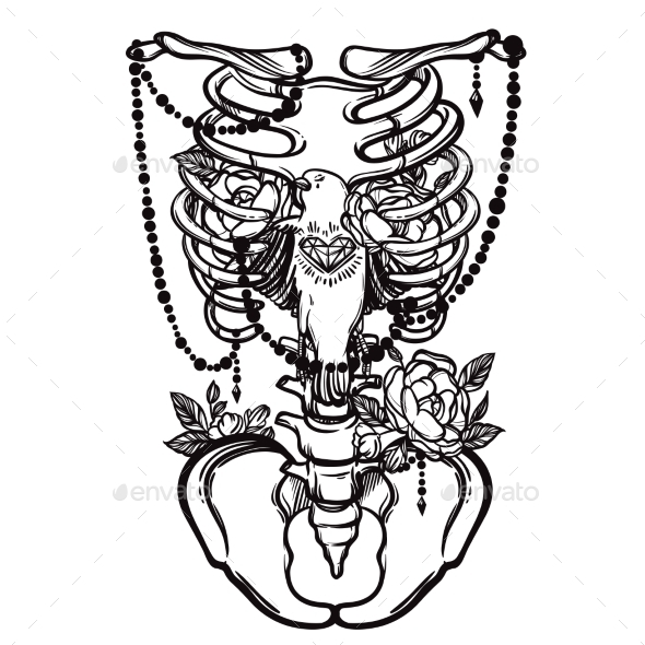 590x590 Skeleton Ribs, Bird And Flowers Vintage Vector By Vavavka