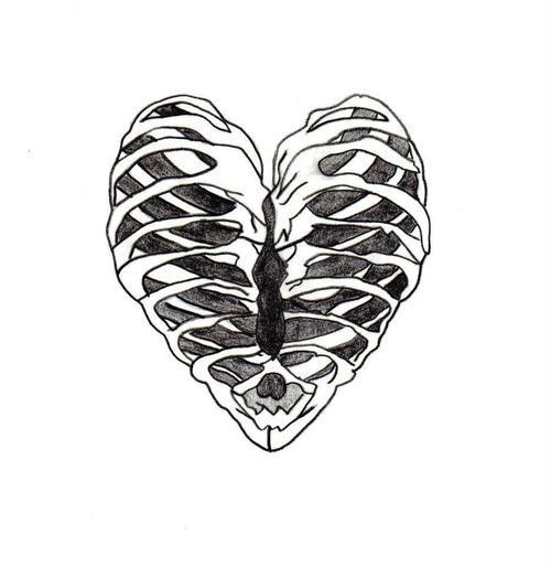 500x514 Love Drawing Heart Sketch Skeleton Bones Ribs Ribcage Organ