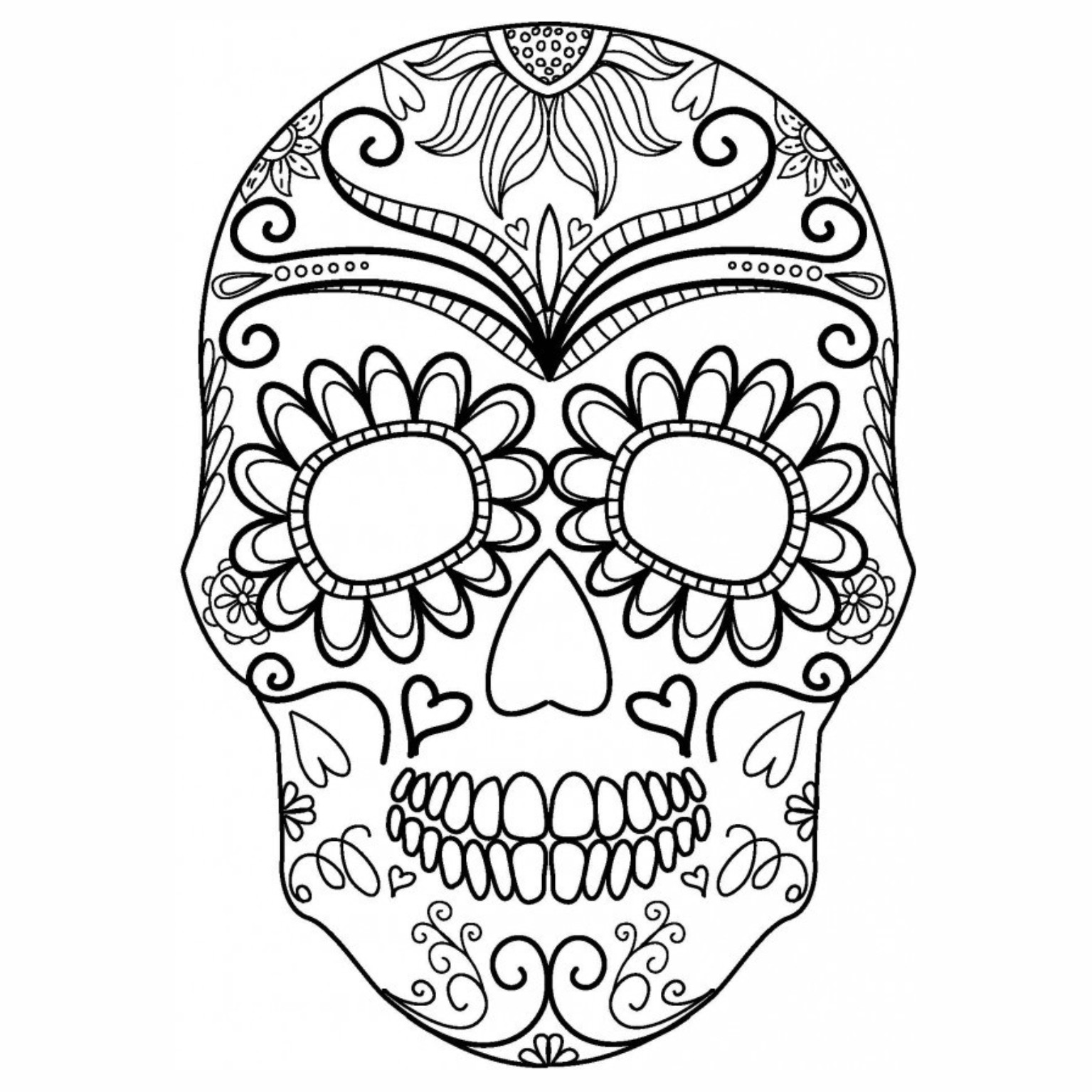 Skeleton Skull Drawing At Getdrawings Free For Personal Use