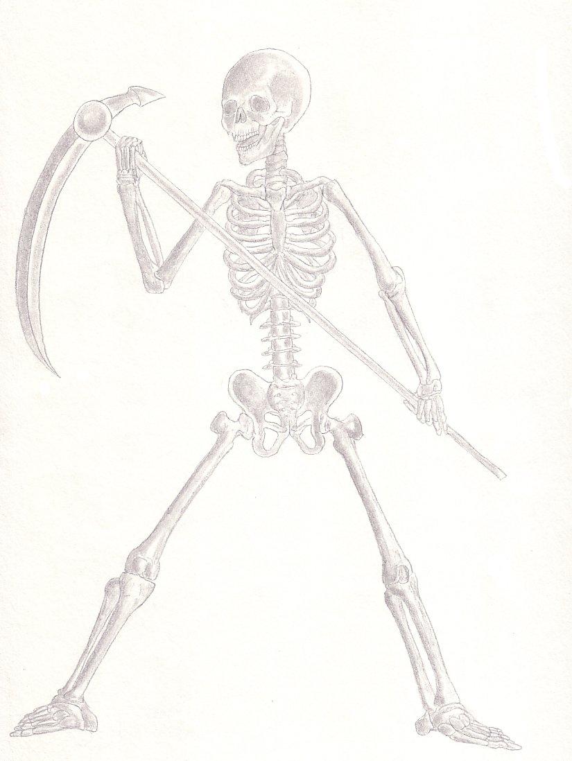 825x1098 Skeleton Warrior By Master Zoda