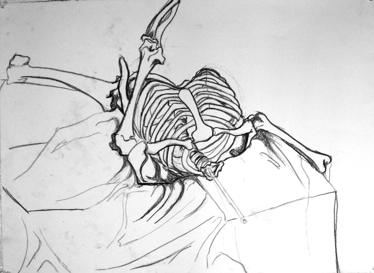 1280x935 Basic Drawing 1 Skeletons Finished To Unfinished Part 2.