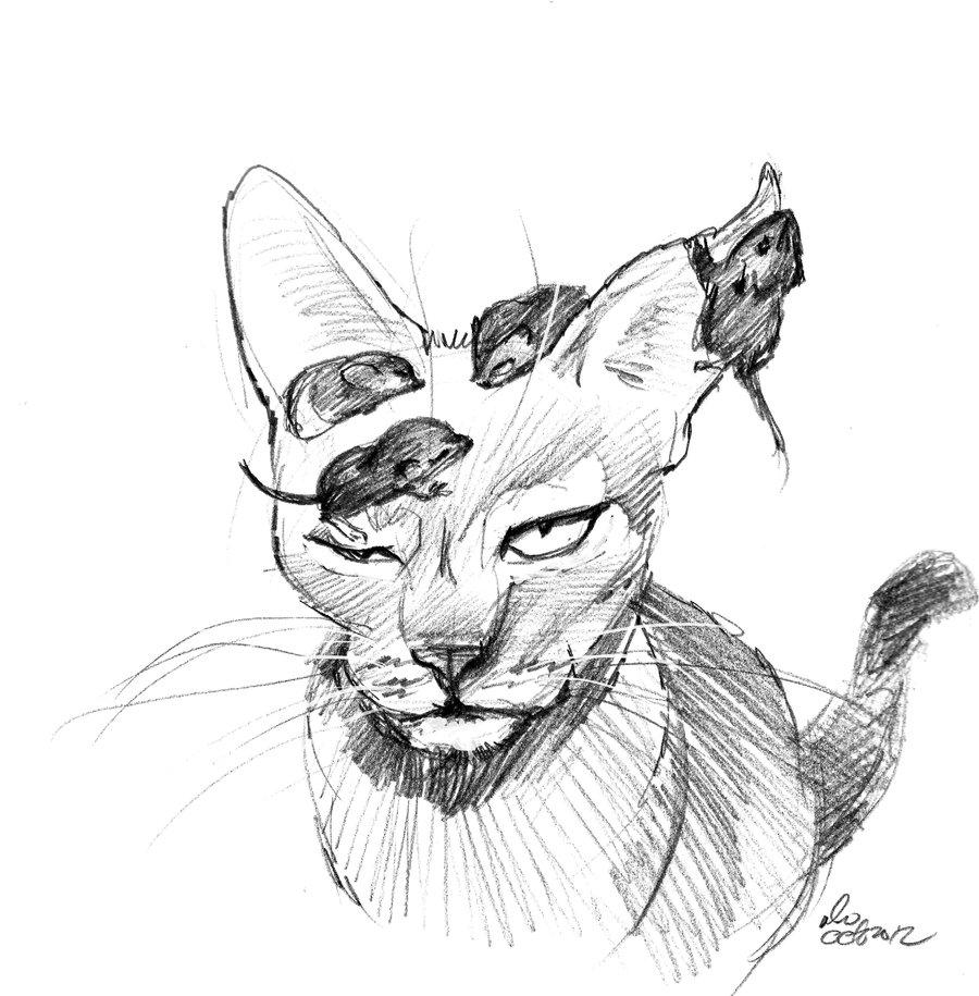 900x915 Mandatory Daily Cat Sketch 1282 By Nosoart