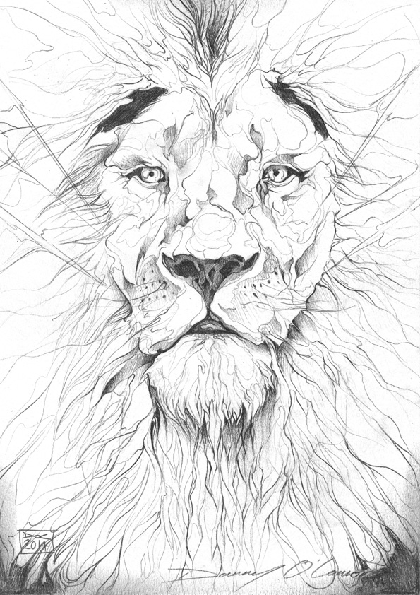 595x842 Used This Image In One Of My Pyrography Projects. Lion Pencil