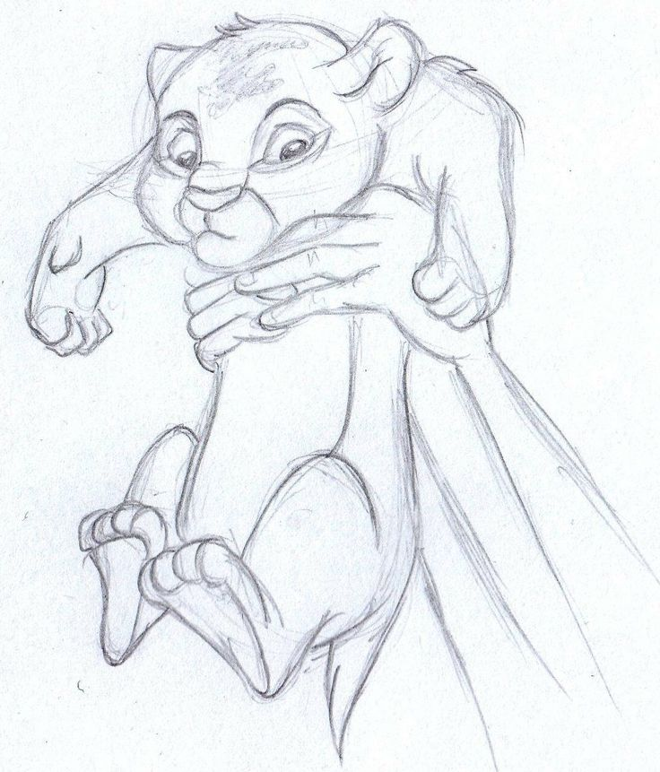 736x861 The Lion King Drawing Tutorial Tags The Lion King Drawing Autumn