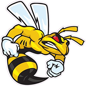 354x355 Ski Doo Angry Bee Decal 5, Decals Amp Bumper Stickers