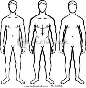 291x300 Outlines Of A Skinny Man, A Toned Man, And An Overweight Man