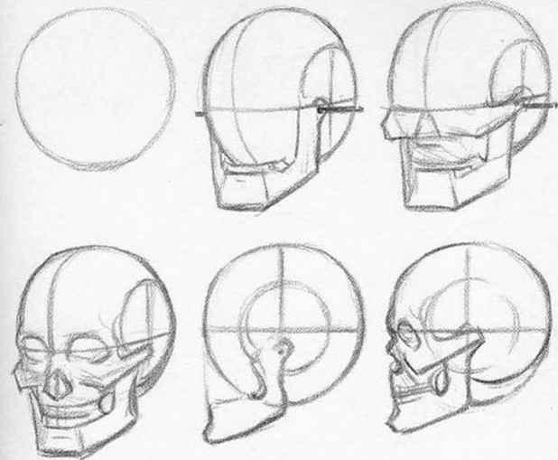 618x509 Insan Anatomisi Karakalem