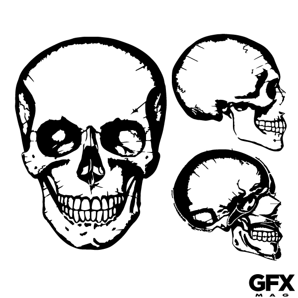 600x600 Skull Images Graphics Group