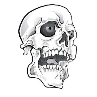 316x316 Skull Bones Vectors Download Free Vector Art Amp Graphics