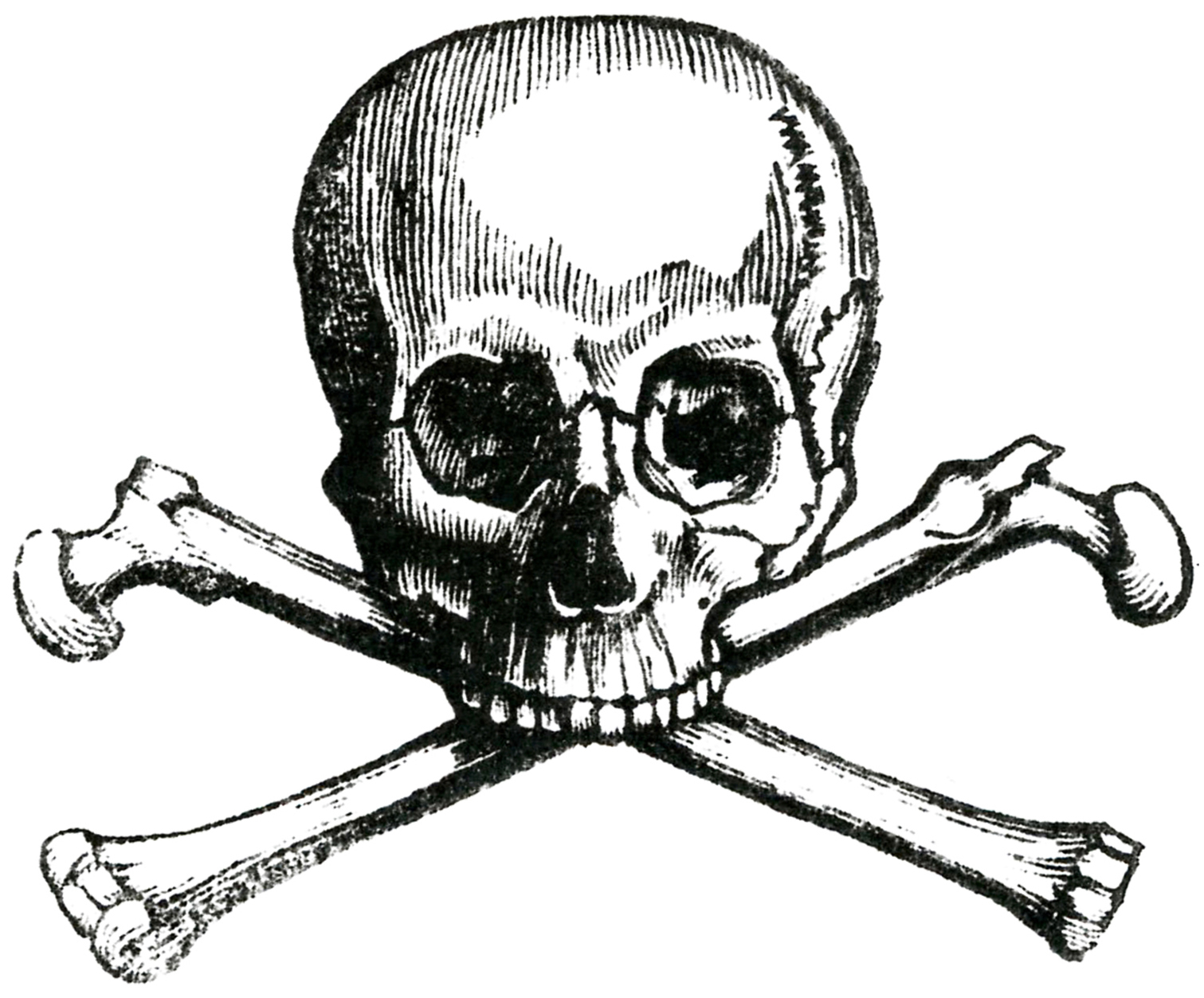 1511x1253 Skull And Crossbones Drawing Early Halloween Image