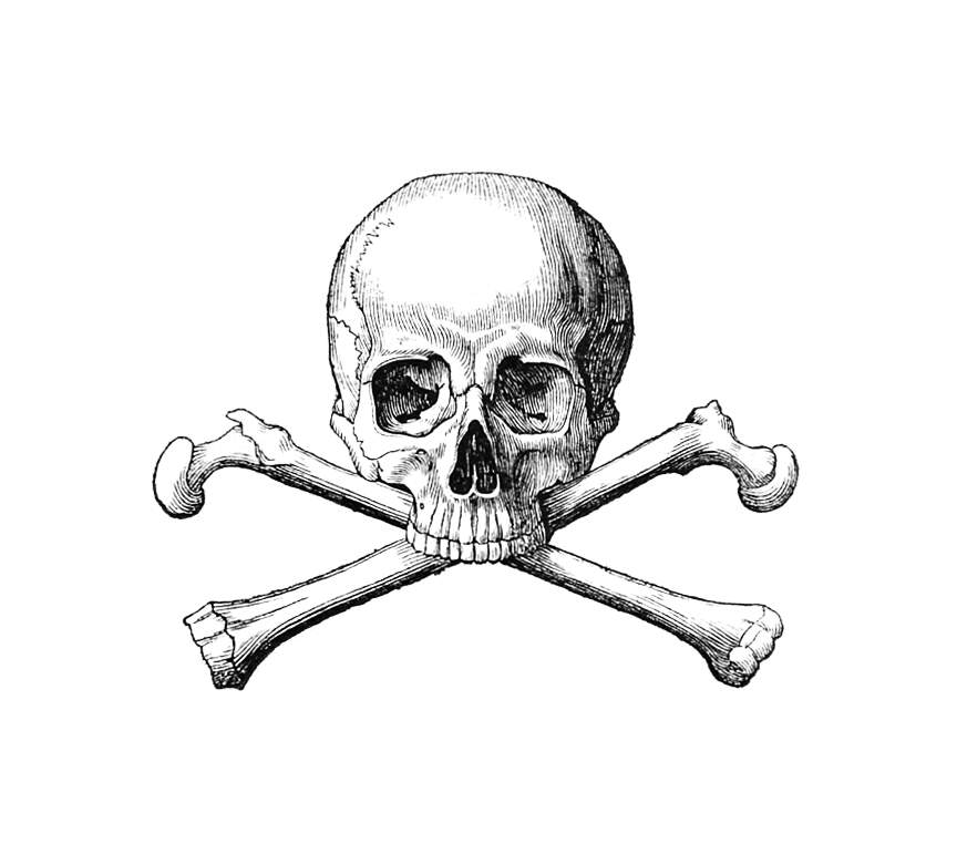 864x762 Skull And Crossbones Old Book Illustrations