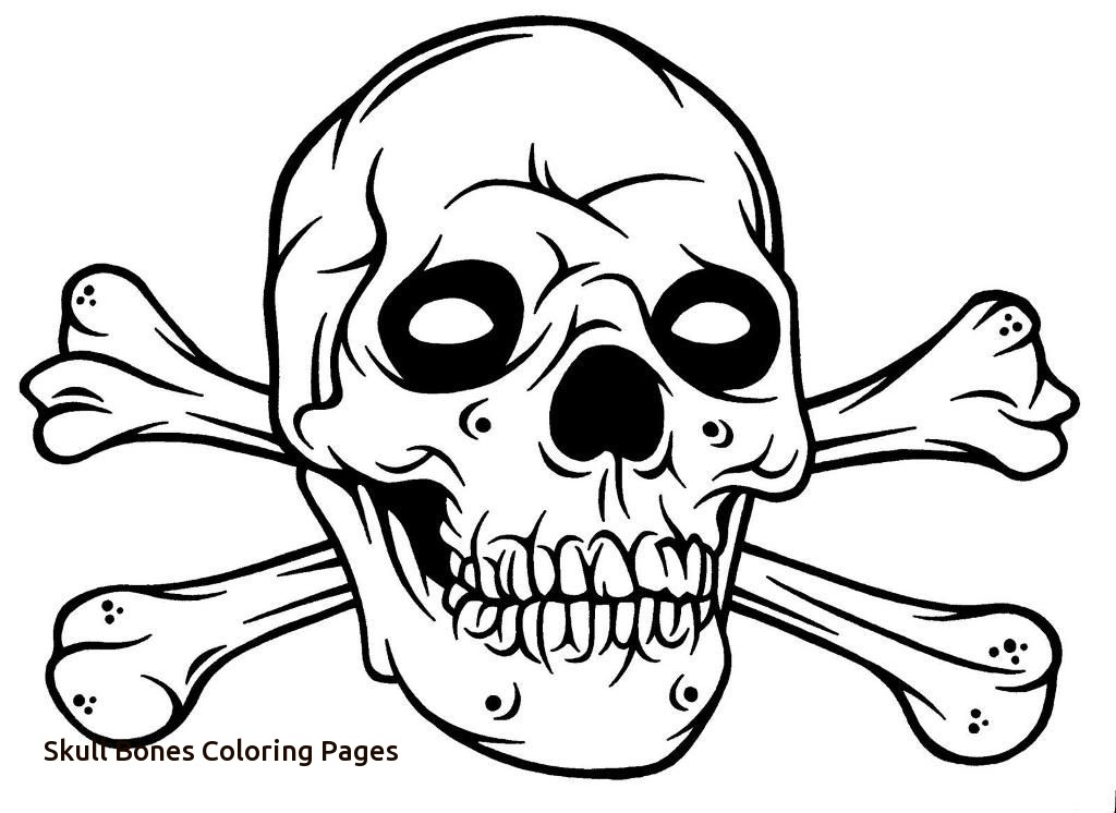 Skull and crossbones drawing at free for for Skull bones coloring pages