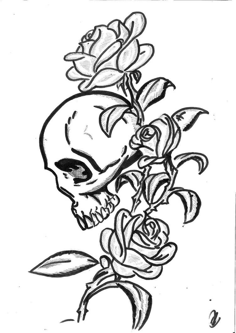Skull And Roses Drawing