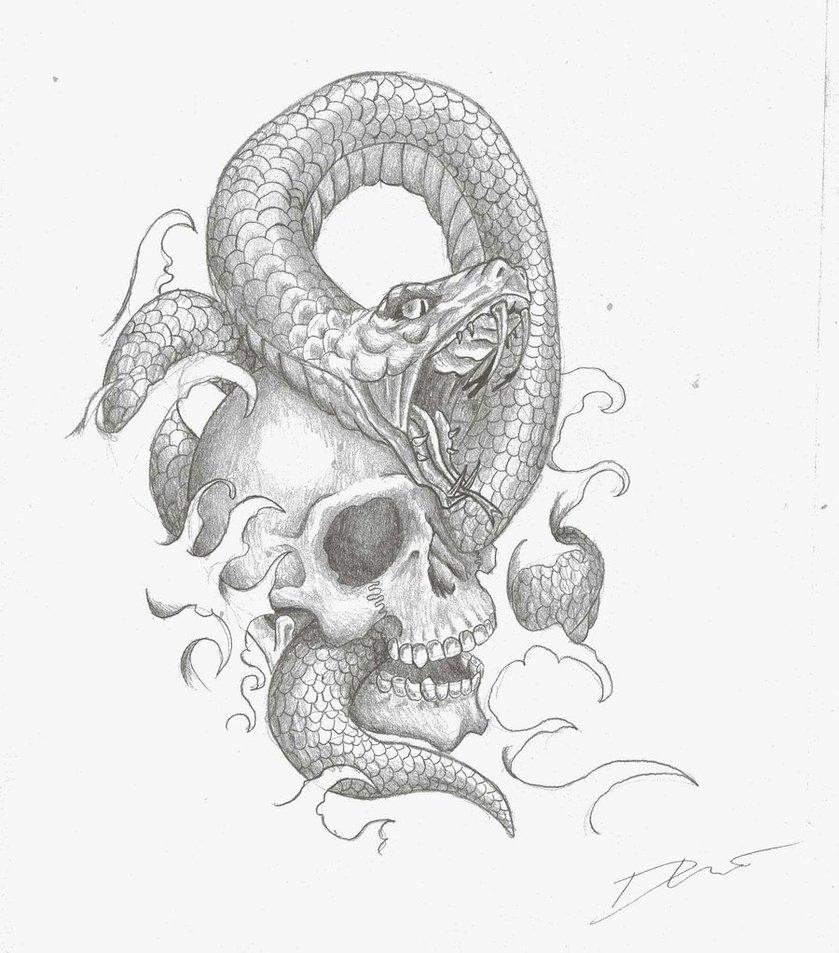 839x953 Drawn Skull