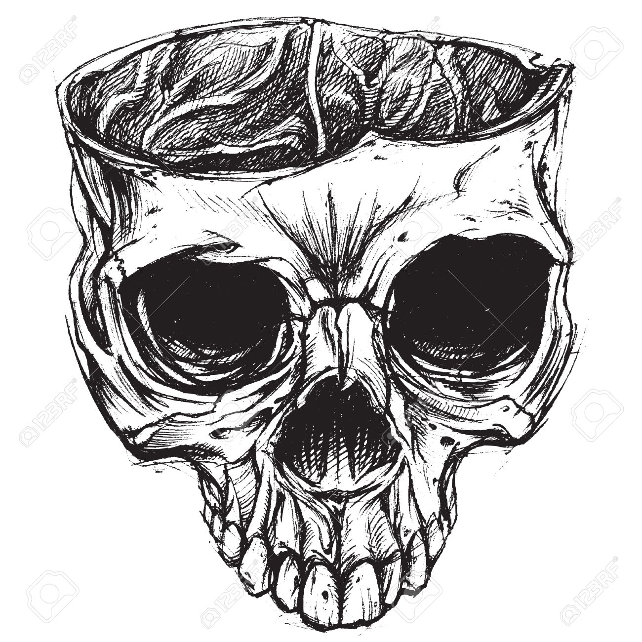 1300x1300 Skull Drawing 02 Royalty Free Cliparts, Vectors, And Stock