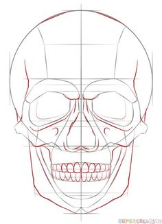 236x326 How To Draw A Human Skull Step By Step. Drawing Tutorials For Kids